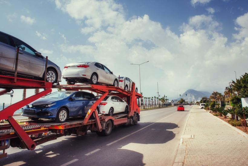Vehicle Transport for Snowbirds