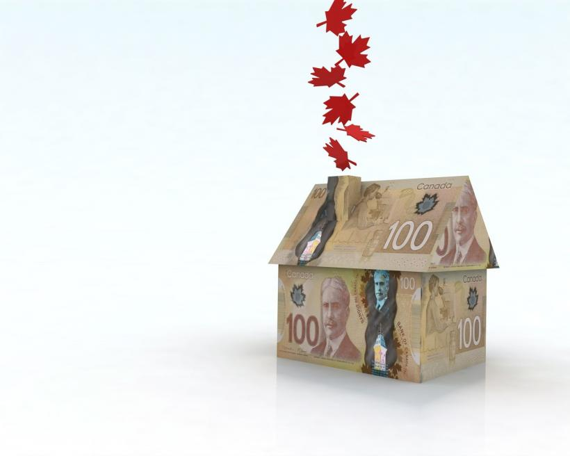 Snowbirds make money by renting out your home in Canada for the winter