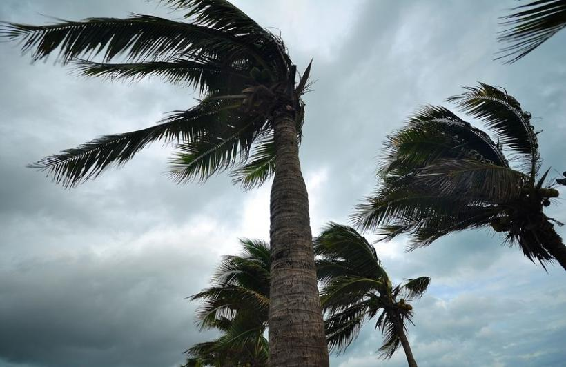 Hurricane and Flood Insurance Tips for Canadian Snowbirds