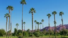 Canadian snowbird guide to Califonia